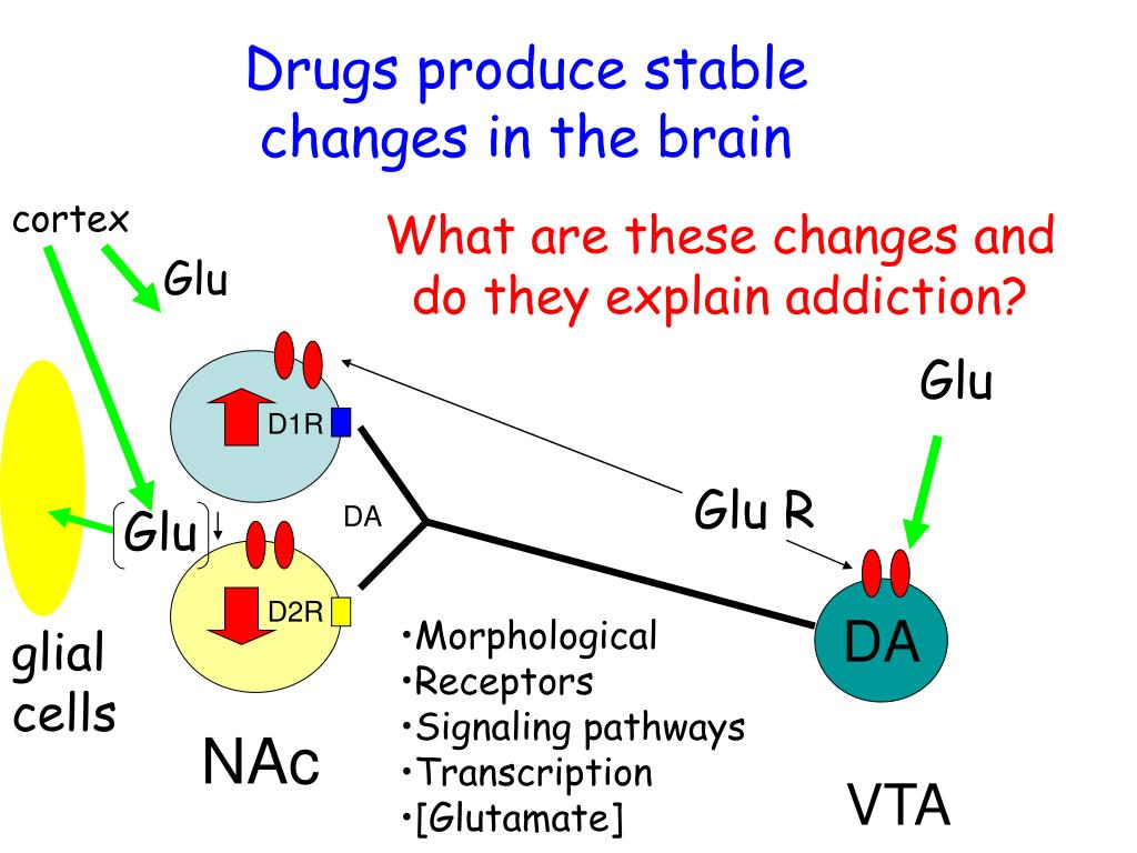 Drugs produce stable