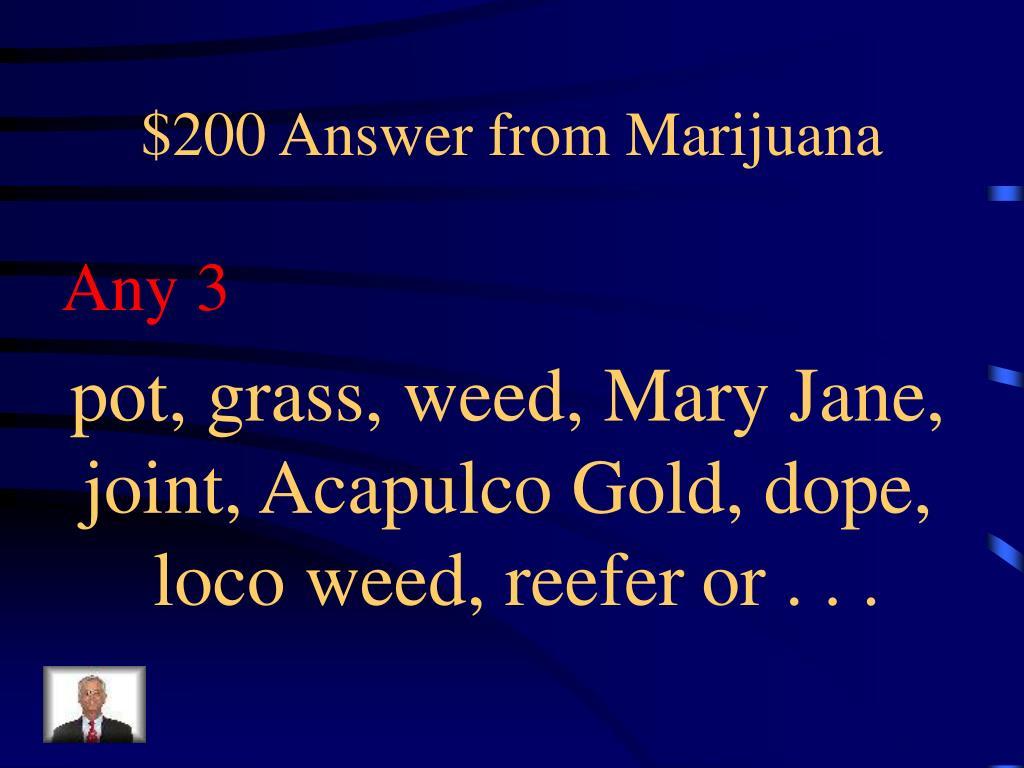 $200 Answer from Marijuana
