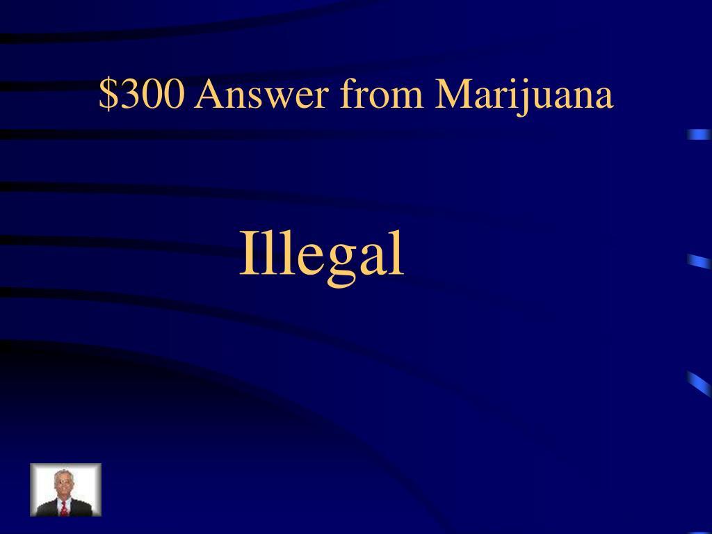$300 Answer from Marijuana