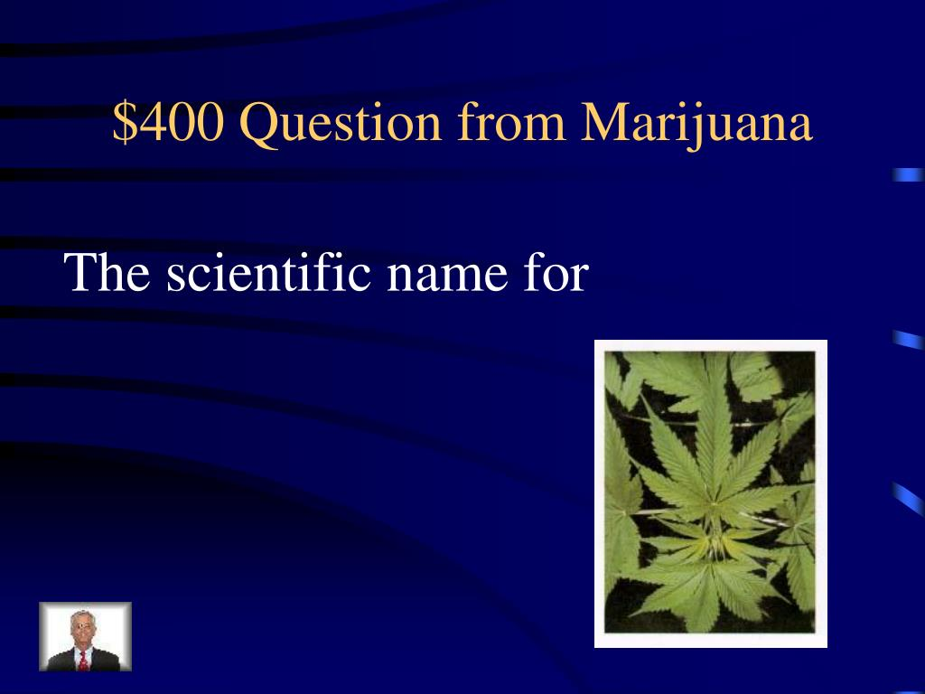 $400 Question from Marijuana