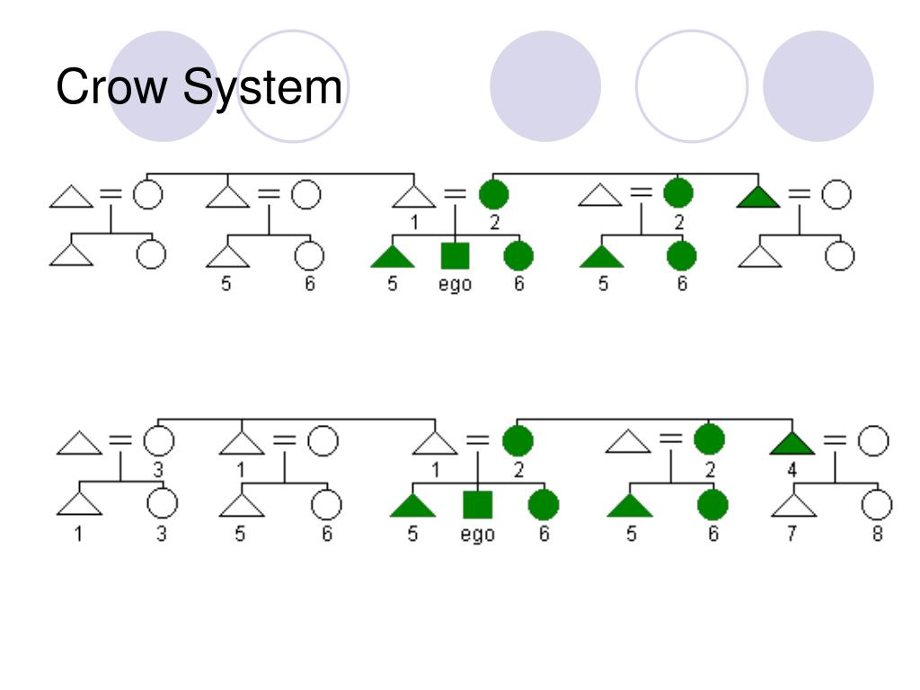 Crow System