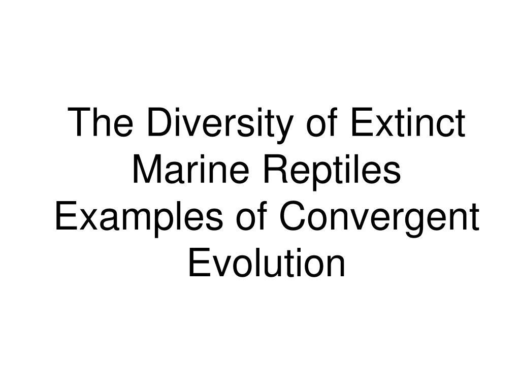 The Diversity of Extinct Marine Reptiles