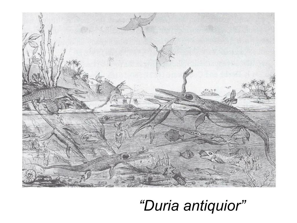 """""""Duria antiquior"""""""