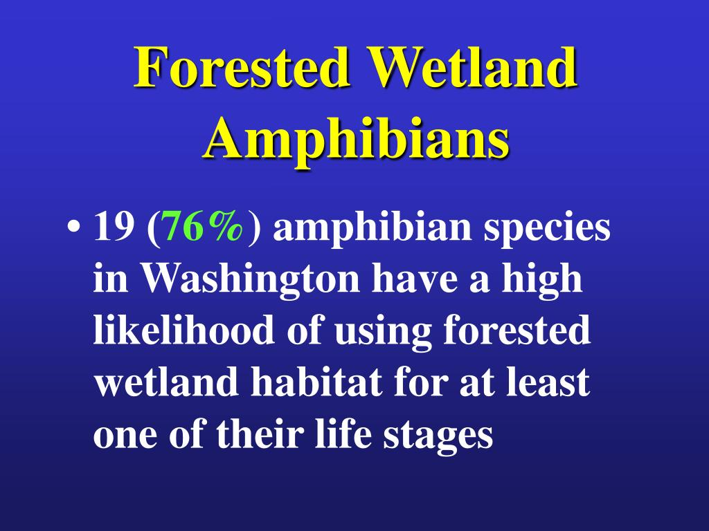 Forested Wetland Amphibians
