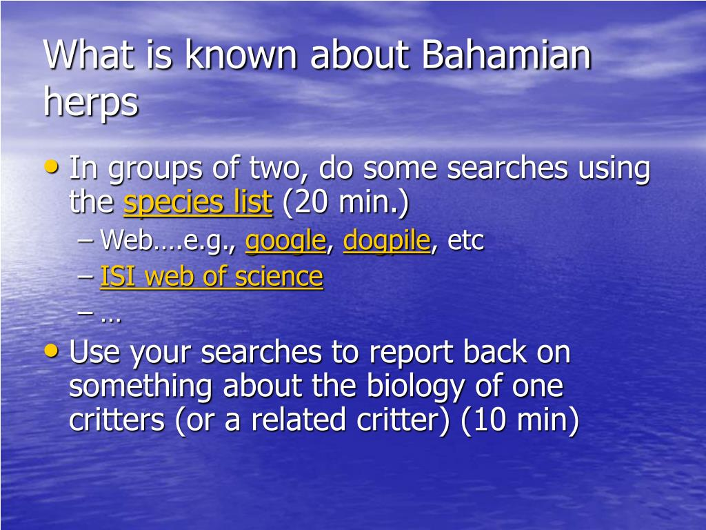 What is known about Bahamian herps