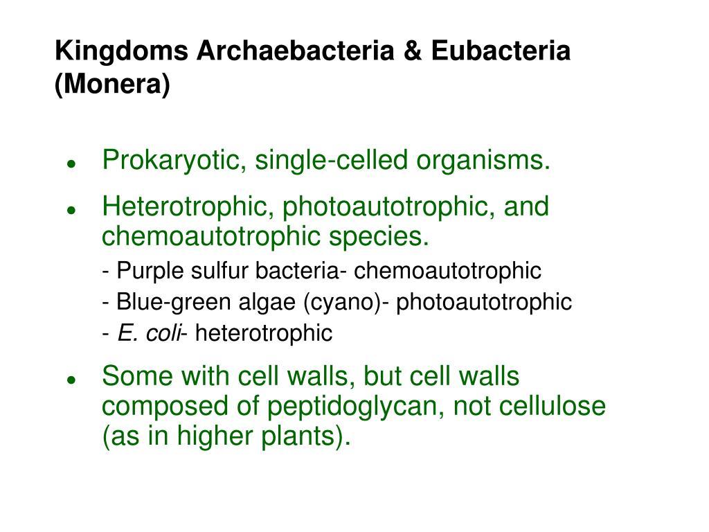 Kingdoms Archaebacteria & Eubacteria (Monera)