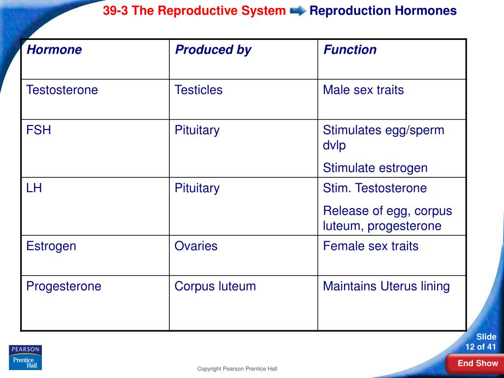 Reproduction Hormones