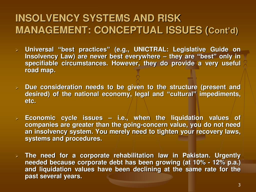 INSOLVENCY SYSTEMS AND RISK MANAGEMENT: CONCEPTUAL ISSUES (