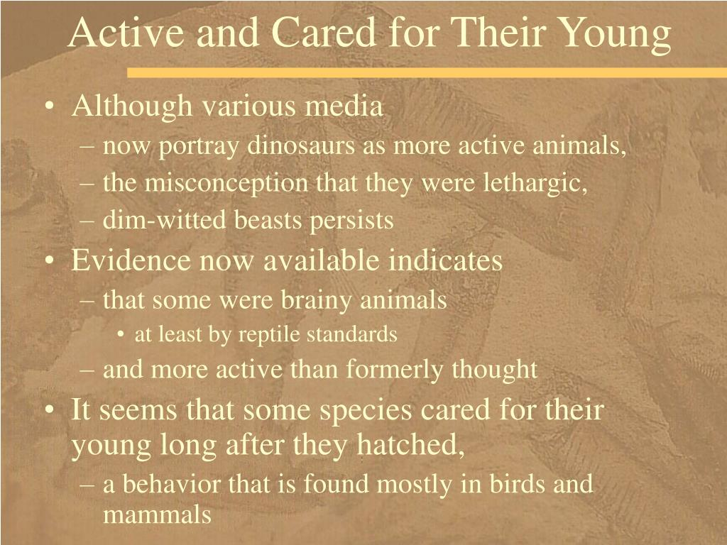 Active and Cared for Their Young