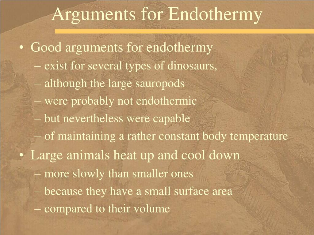 Arguments for Endothermy