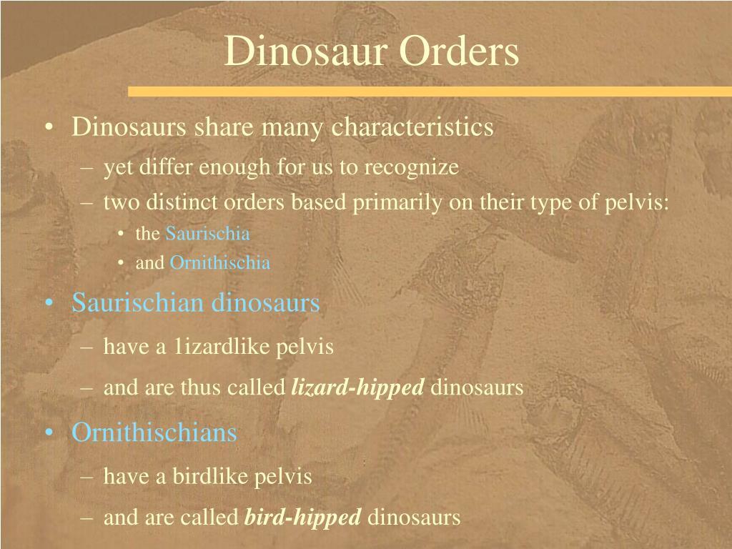 Dinosaur Orders