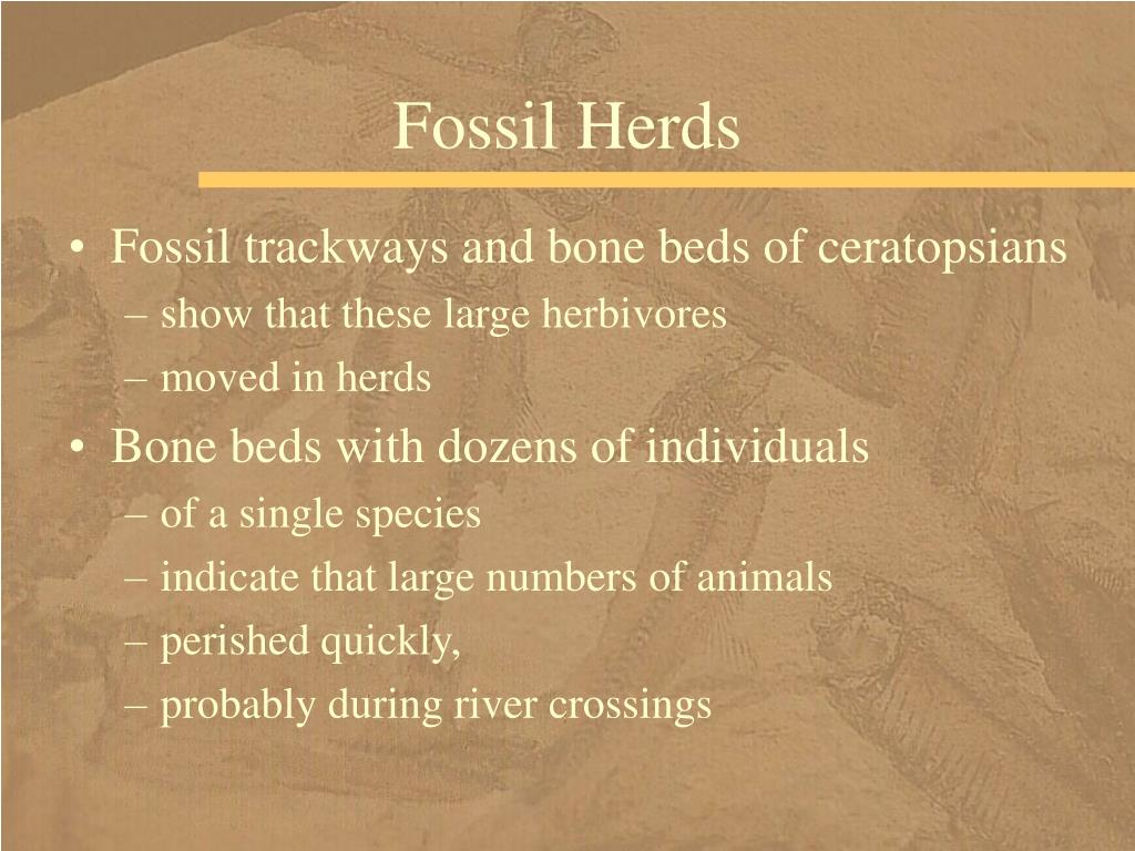 Fossil Herds