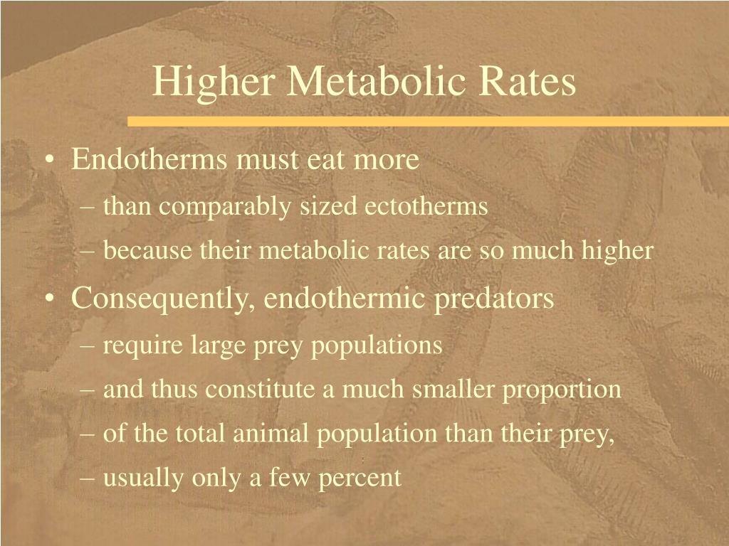 Higher Metabolic Rates