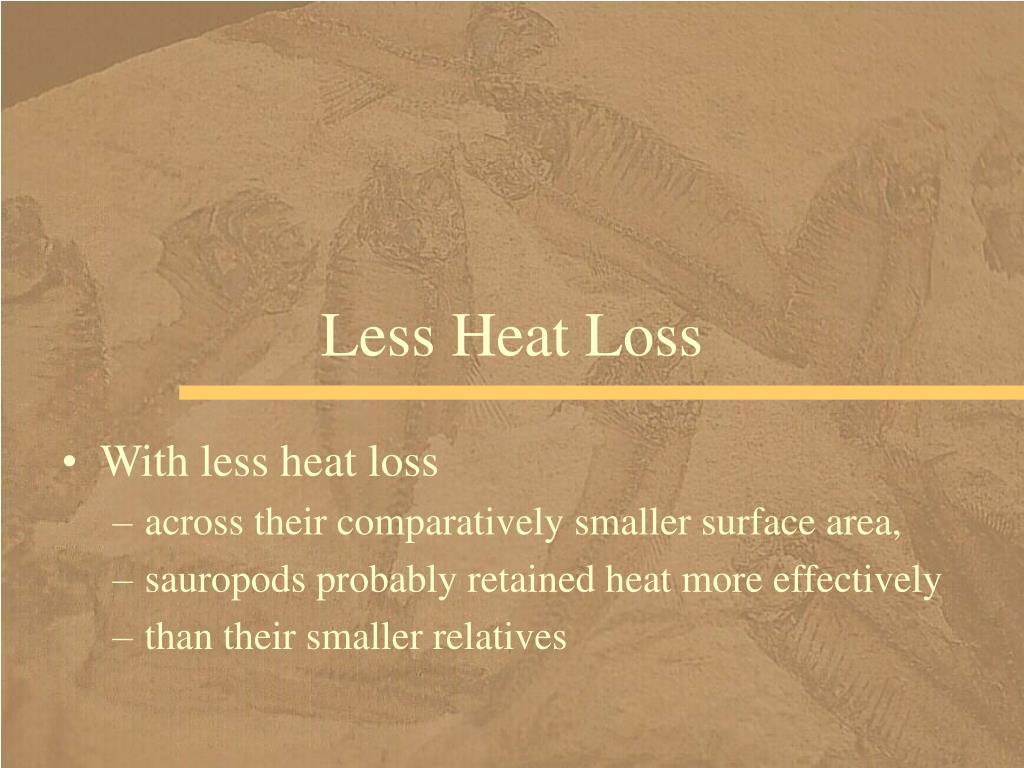 Less Heat Loss