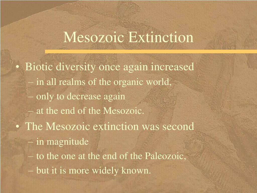Mesozoic Extinction