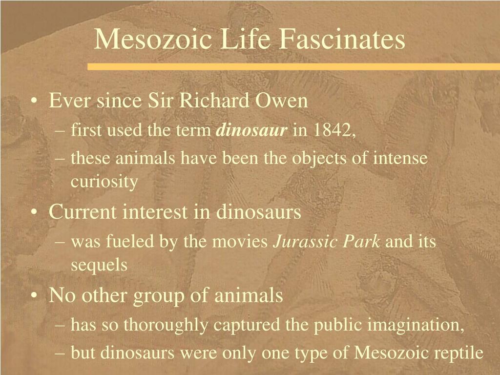 Mesozoic Life Fascinates