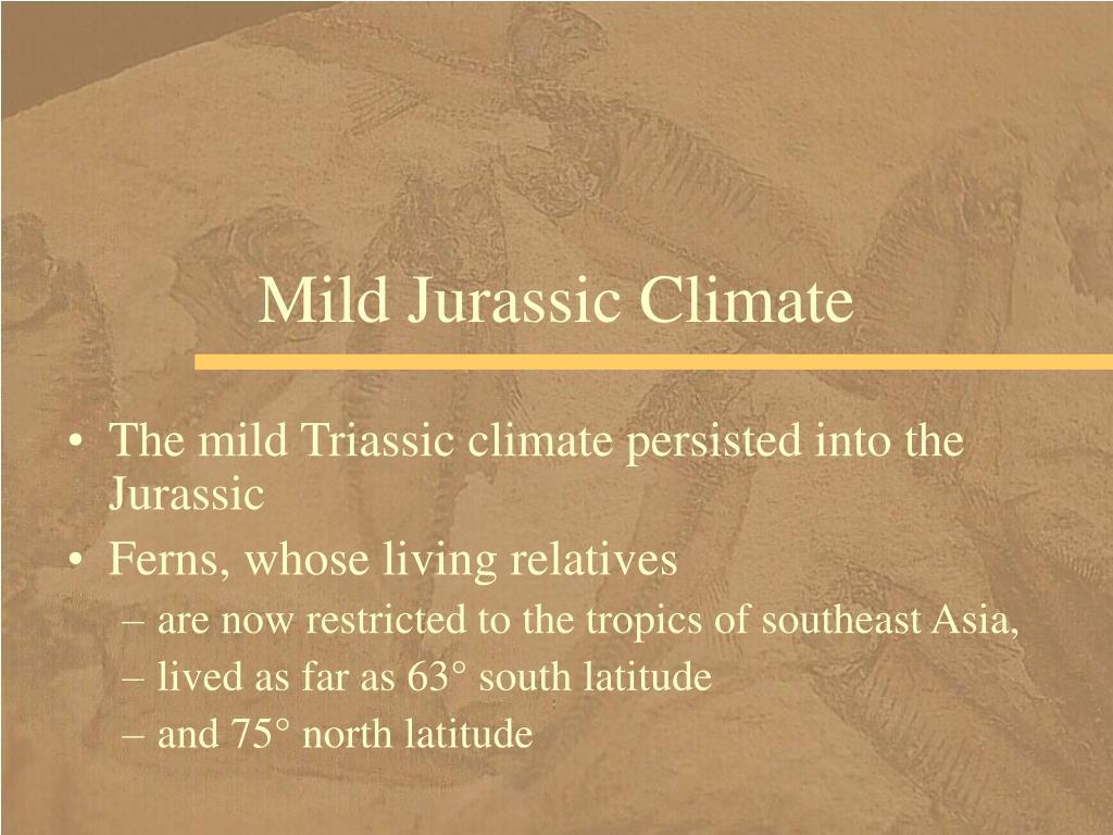 Mild Jurassic Climate