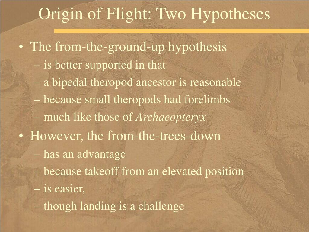 Origin of Flight: Two Hypotheses