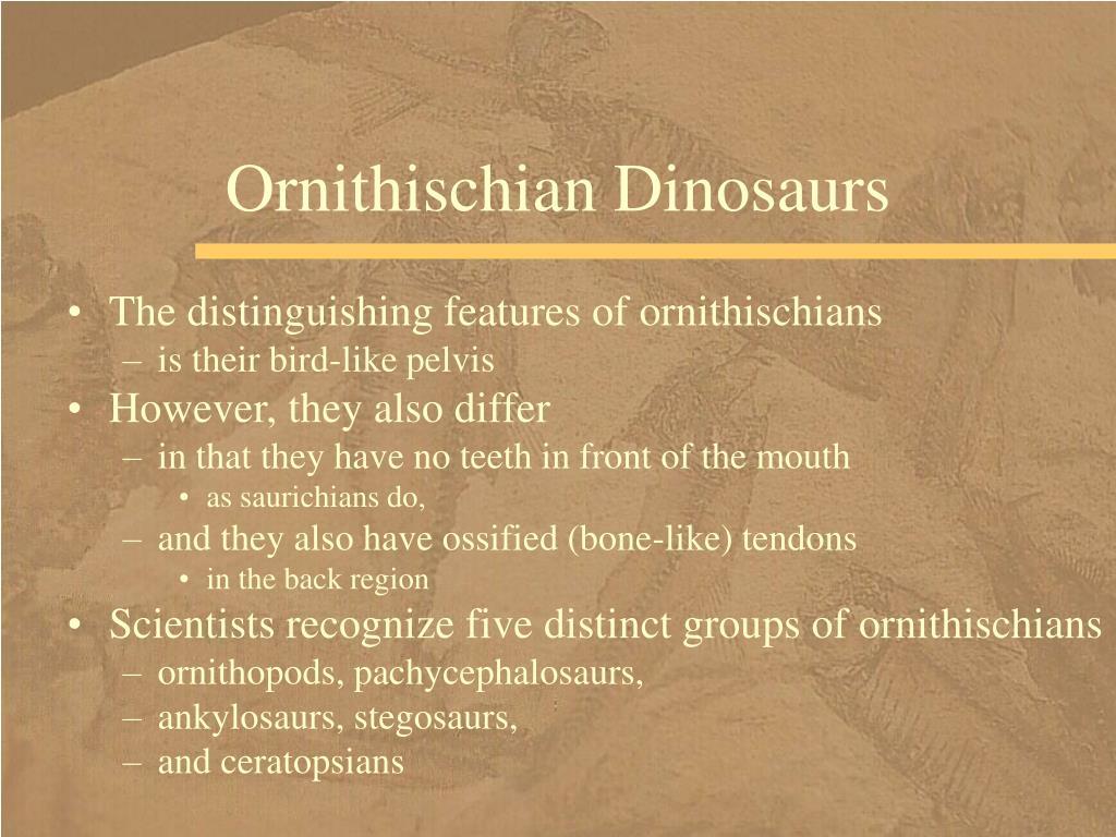 Ornithischian Dinosaurs