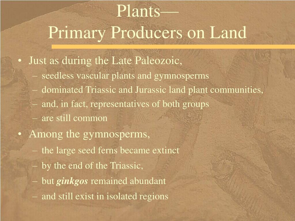 Plants—