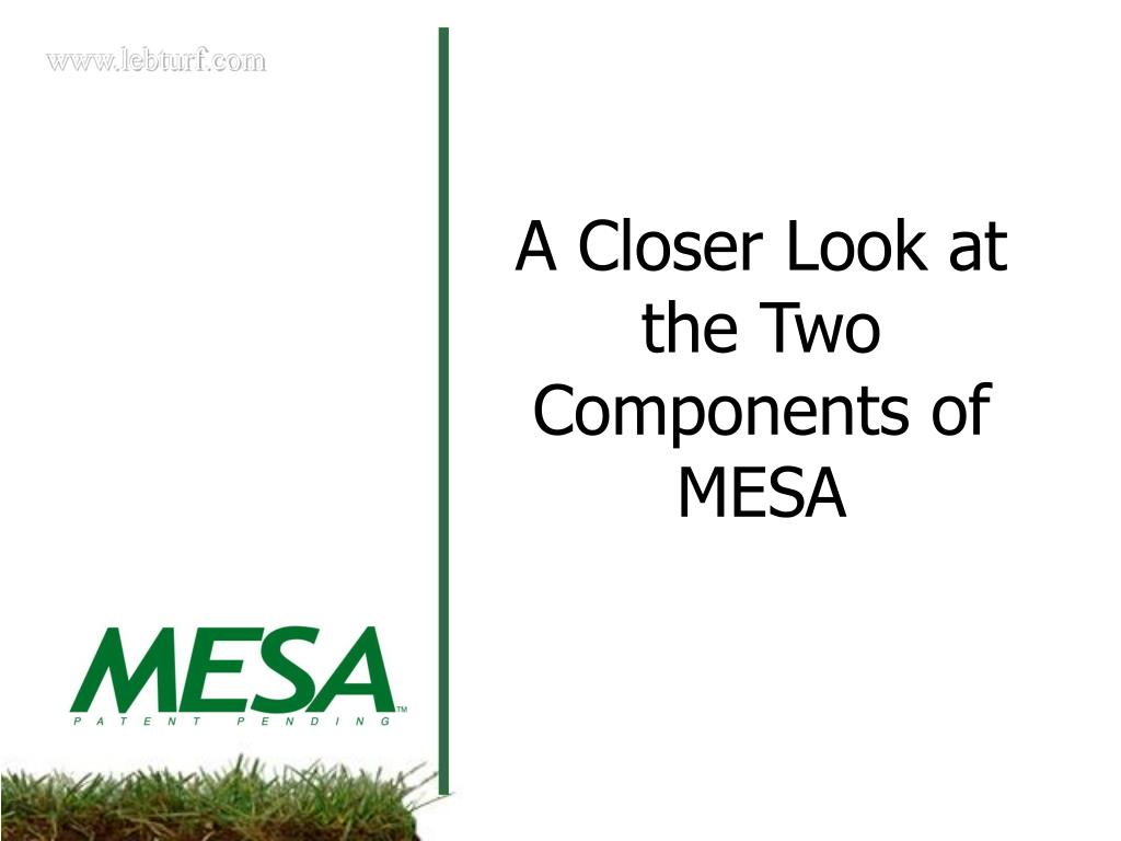 A Closer Look at the Two Components of MESA
