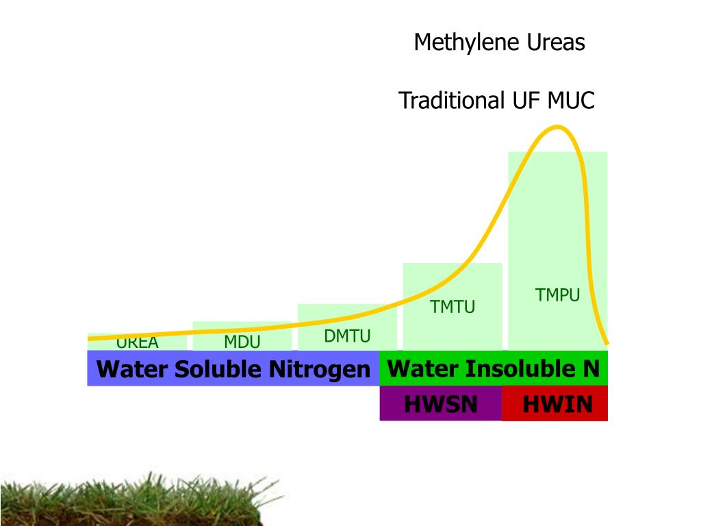 Methylene Ureas