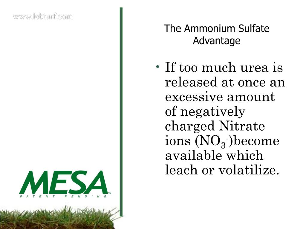 If too much urea is released at once an excessive amount of negatively charged Nitrate ions (NO