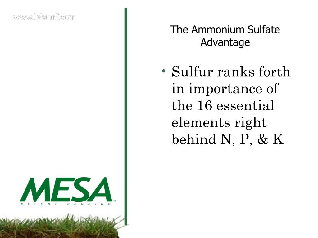 Sulfur ranks forth in importance of the 16 essential elements right behind N, P, & K