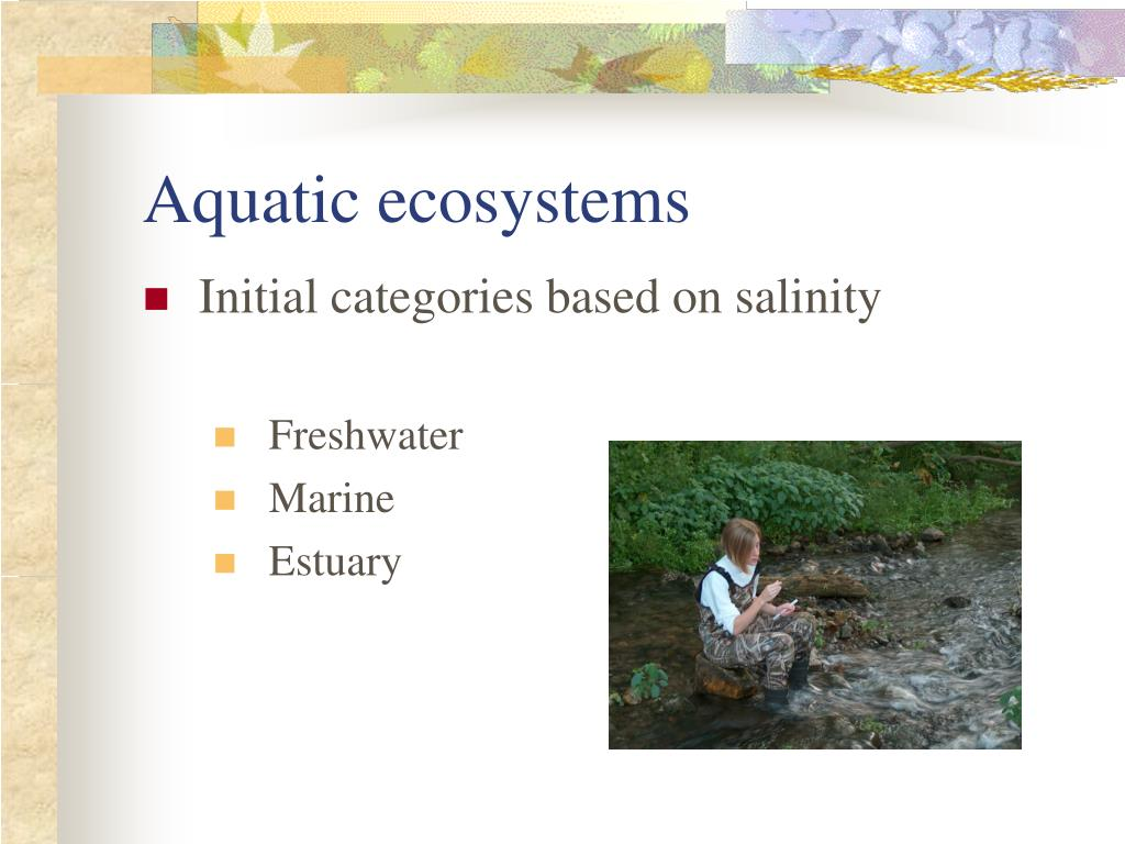 Aquatic ecosystems