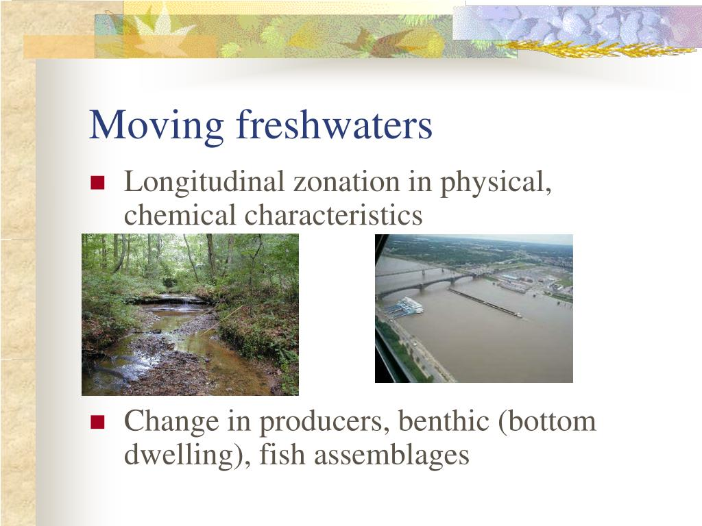 Moving freshwaters