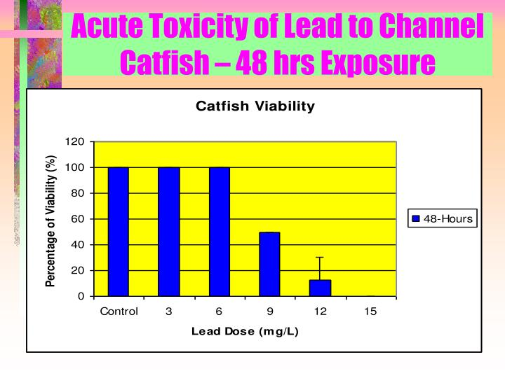 Acute Toxicity of Lead to Channel Catfish – 48 hrs Exposure