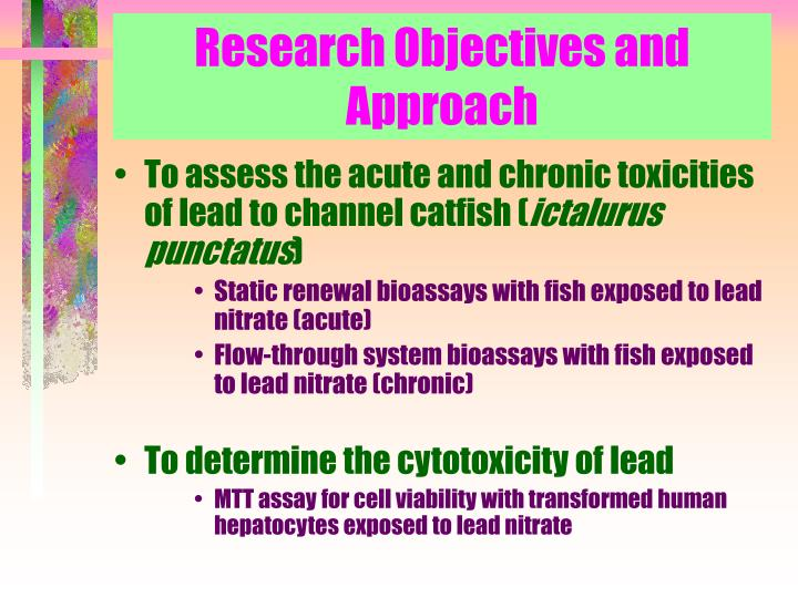 Research Objectives and Approach