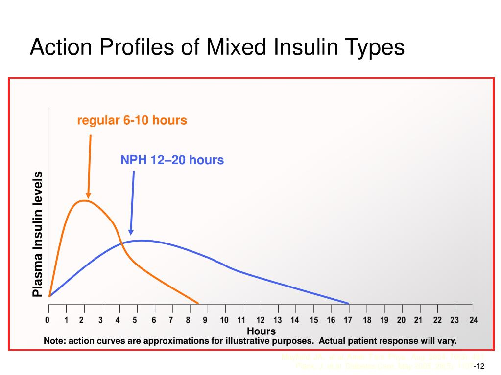 Action Profiles of Mixed Insulin Types