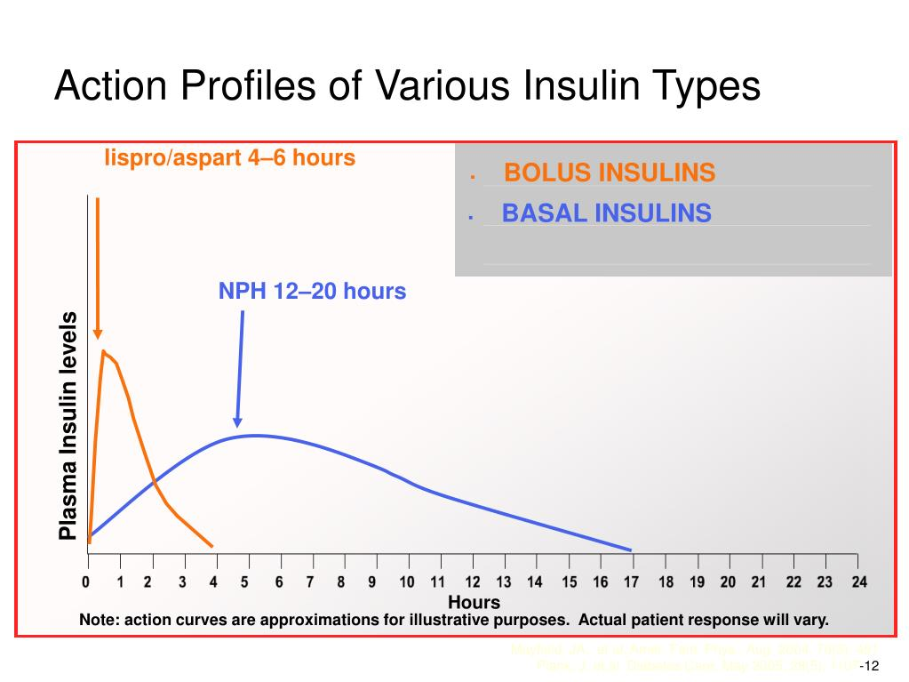 Action Profiles of Various Insulin Types