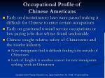 occupational profile of chinese americans