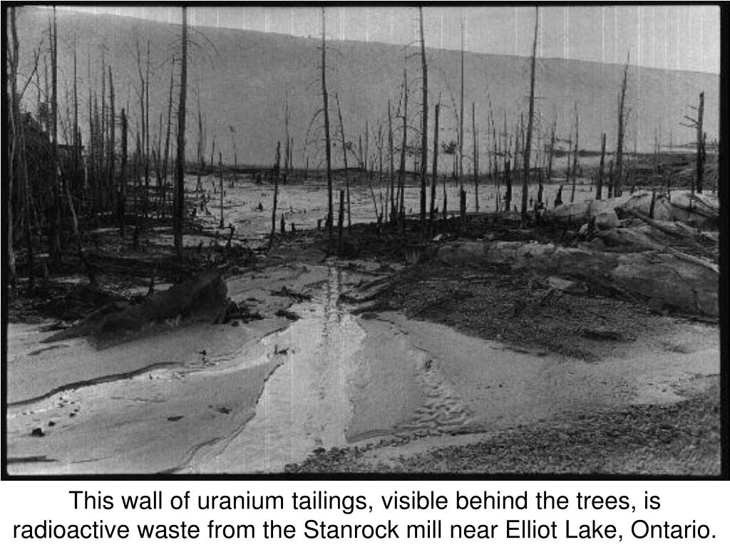 This wall of uranium tailings, visible behind the trees, is
