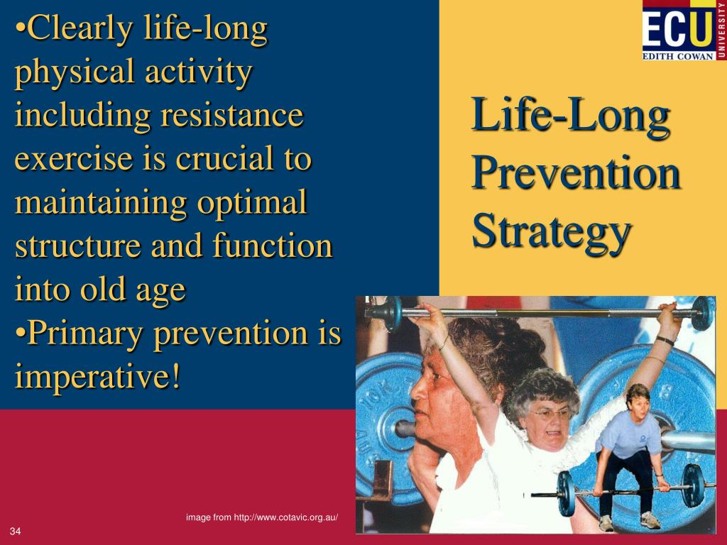 Clearly life-long physical activity including resistance exercise is crucial to maintaining optimal structure and function into old age