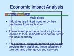 economic impact analysis34