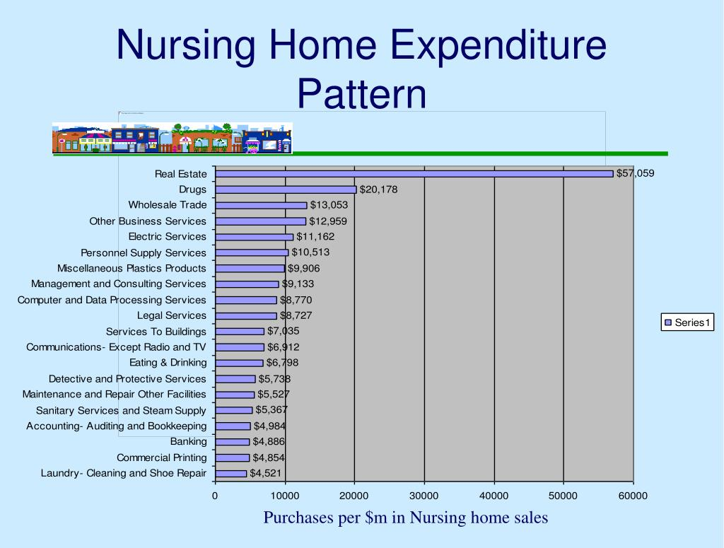 Nursing Home Expenditure Pattern