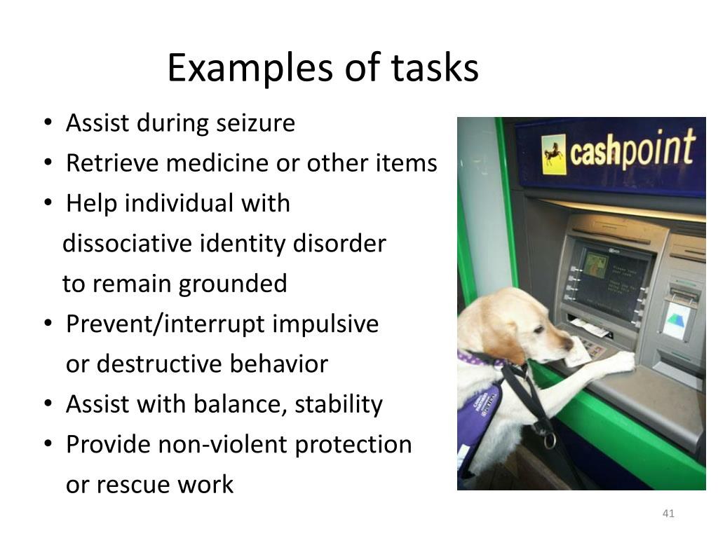 Examples of tasks