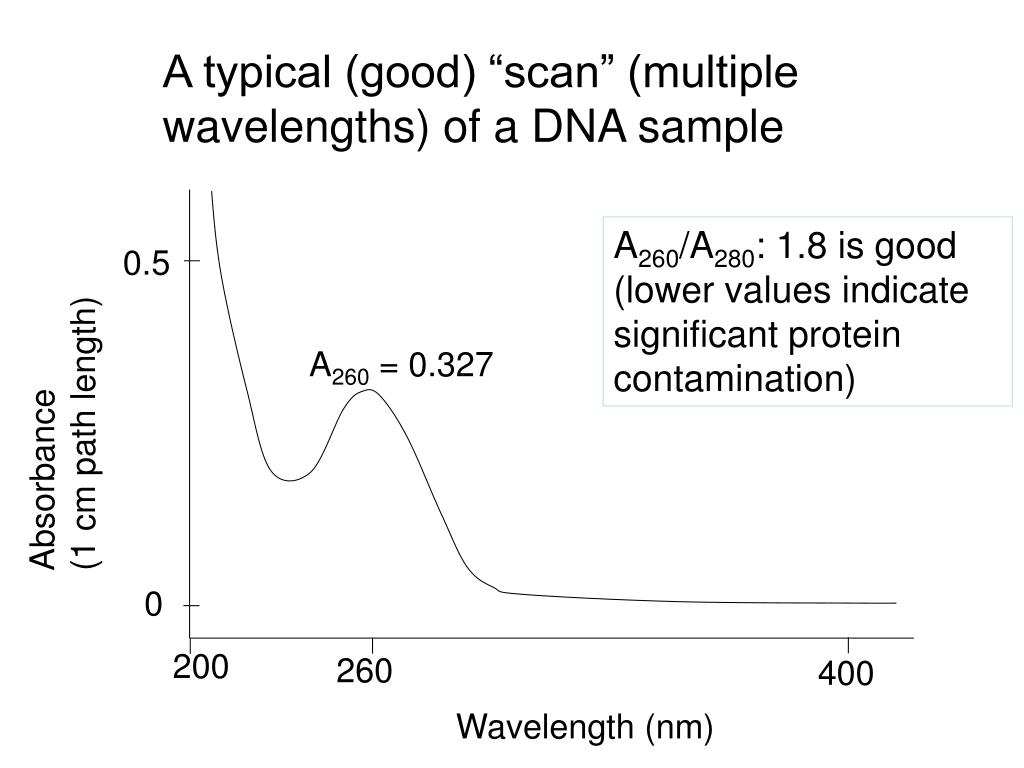 "A typical (good) ""scan"" (multiple wavelengths) of a DNA sample"