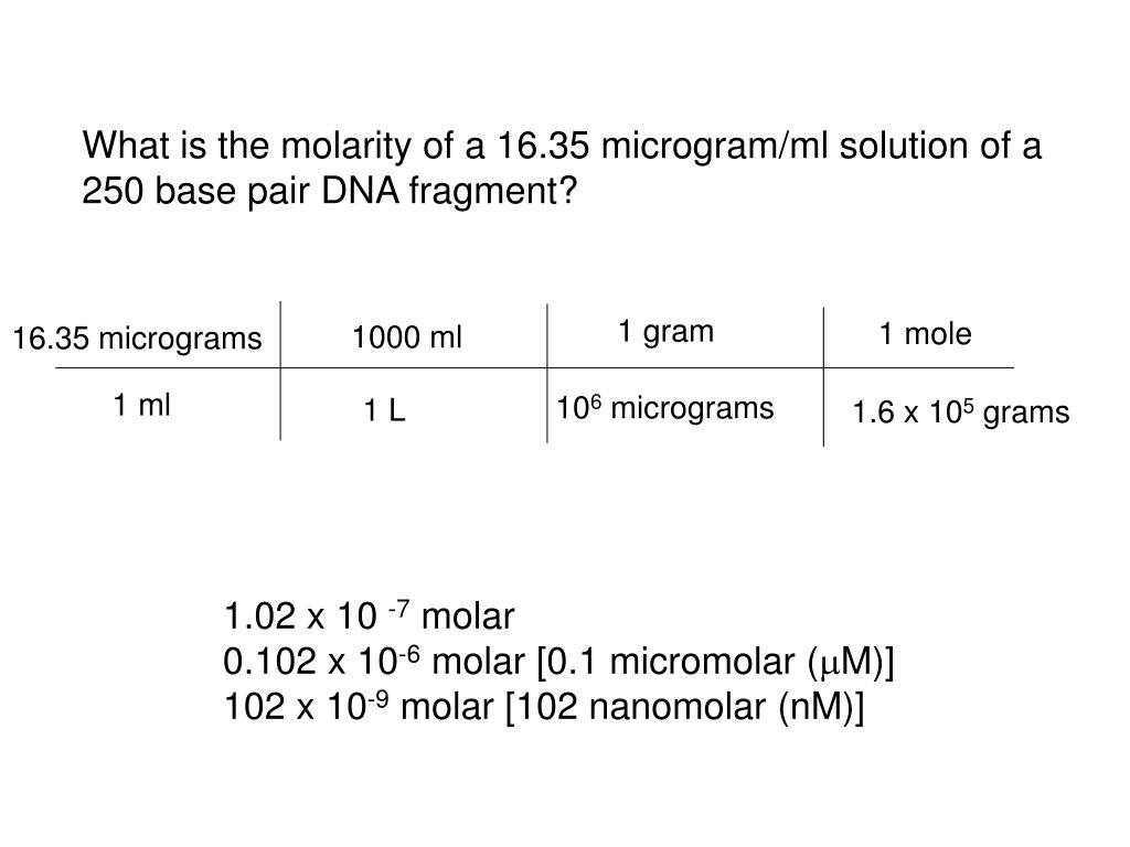 What is the molarity of a 16.35 microgram/ml solution of a 250 base pair DNA fragment?