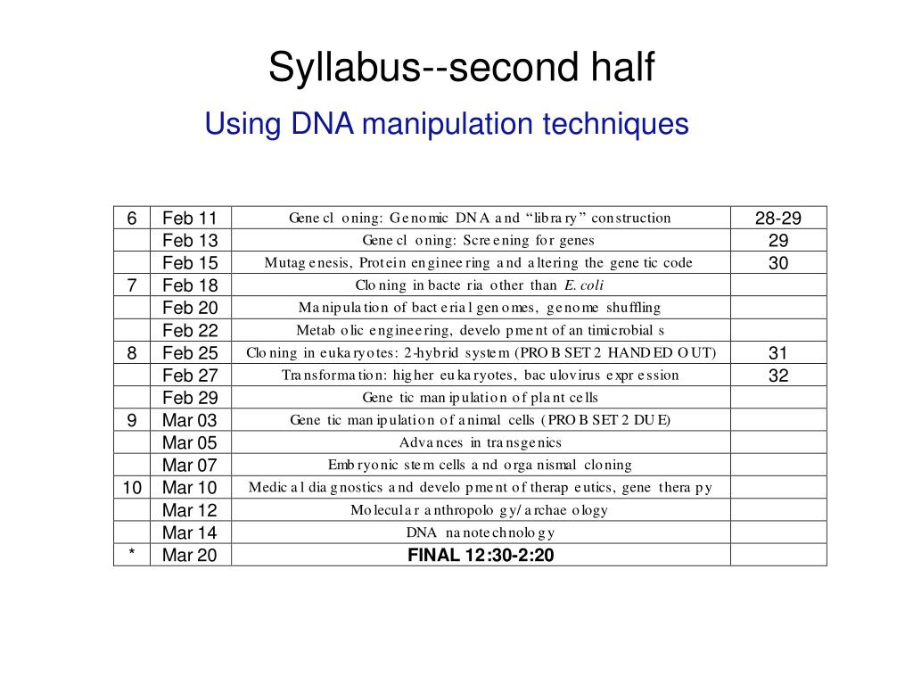 Syllabus--second half