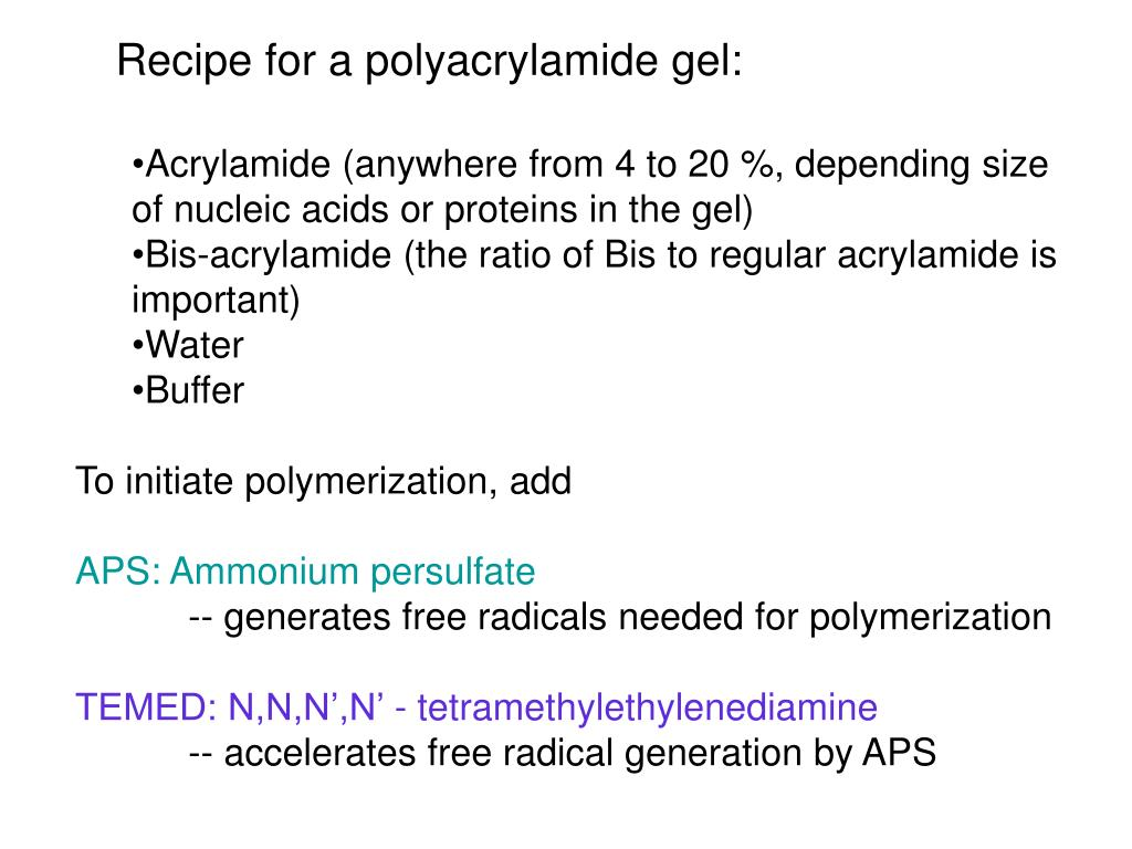 Recipe for a polyacrylamide gel:
