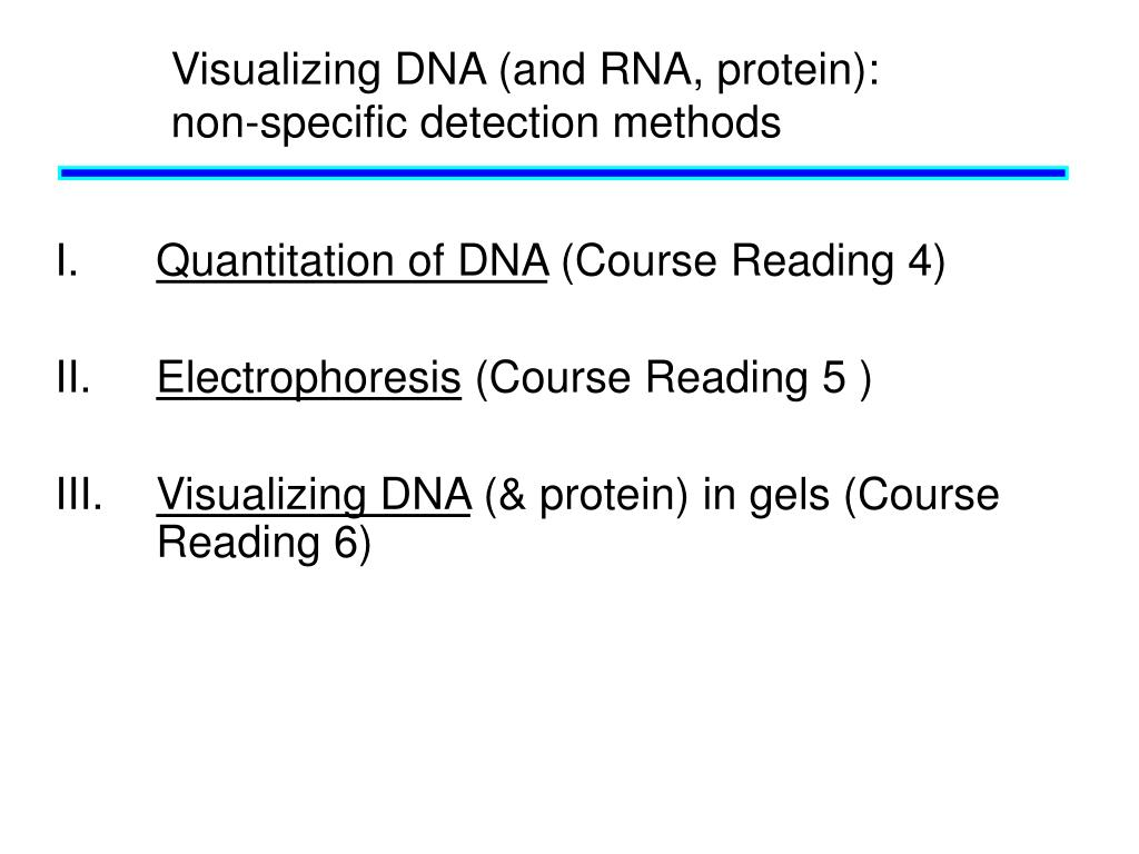 Visualizing DNA (and RNA, protein): non-specific detection methods