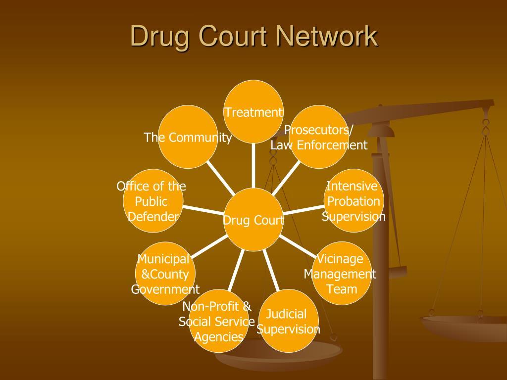Drug Court Network