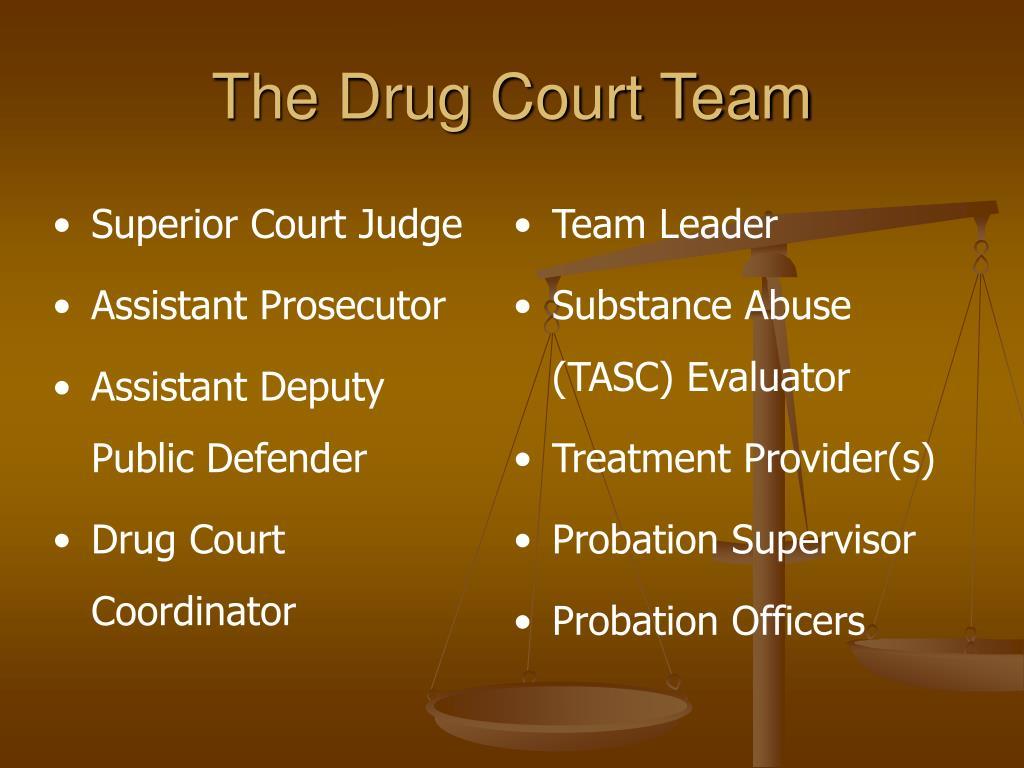 The Drug Court Team