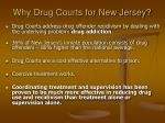why drug courts for new jersey