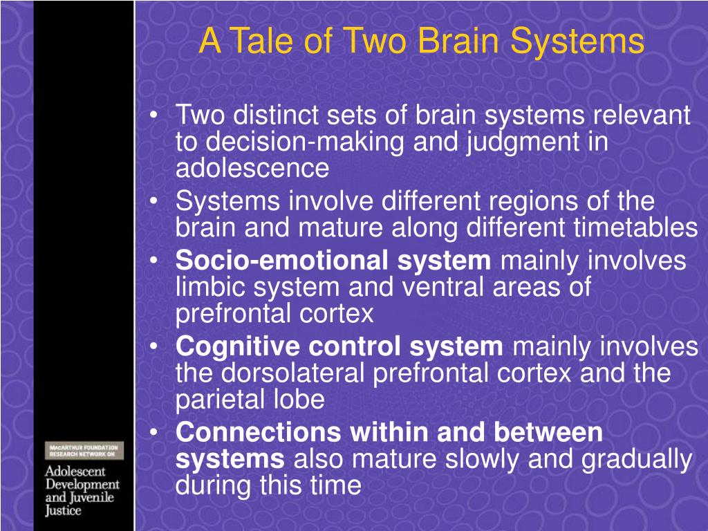 A Tale of Two Brain Systems