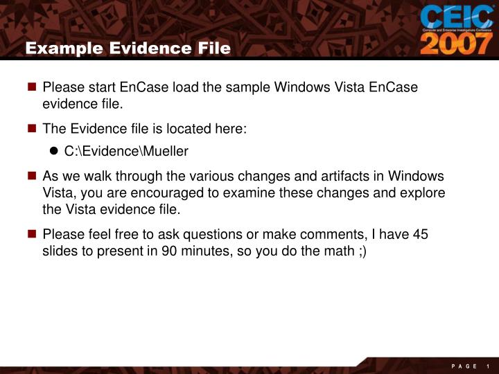 Example Evidence File